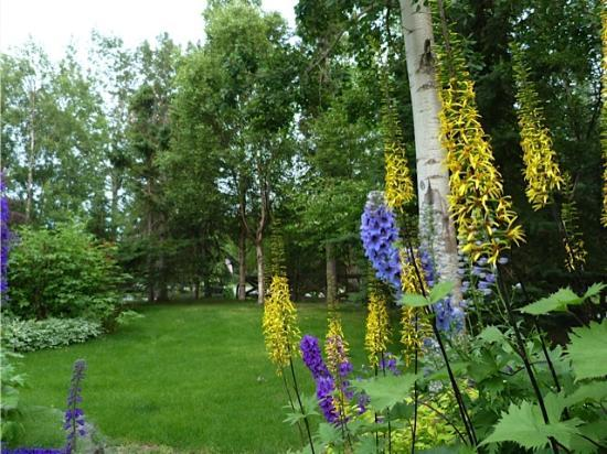 Alaskan Frontier Gardens Bed and Breakfast: The gardens