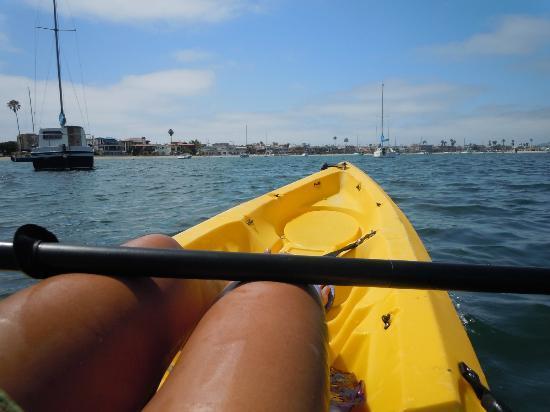 Mission Bay Kayaking Tours