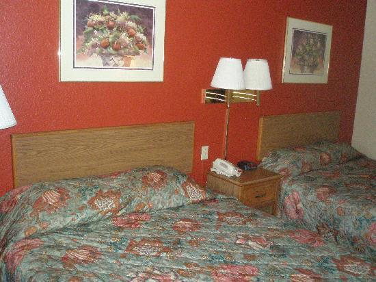 Super 8 Harrisonburg: Guest Room Double/Double