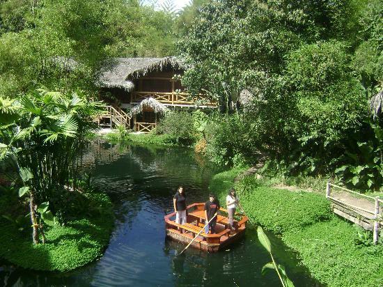 Mindo Lago: Vista en el día