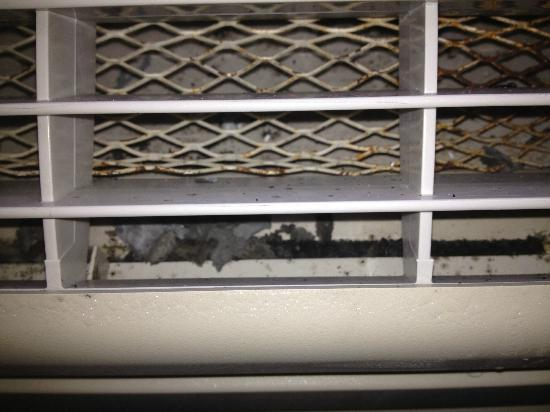 Majestic Hotel: These are large lumps of mold growing inside the AC unit.