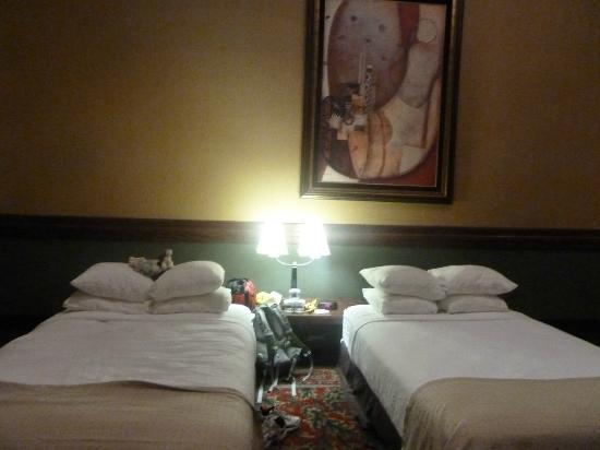 Holiday Inn Rapid City - Rushmore Plaza: AMAZING!!!!