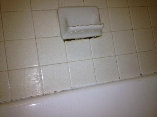 Econo Lodge: mildew around soap dish and tile