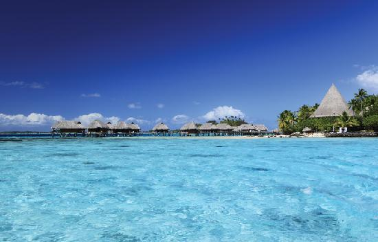 Sofitel Bora Bora Private Island : Island Overwater Bungalows