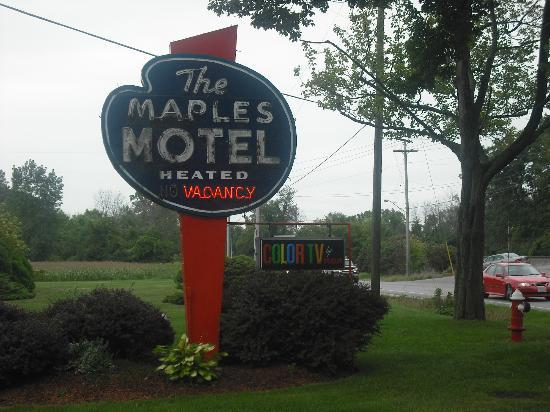 ‪مابلز موتل: The Maples Motel