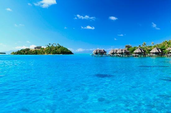 Sofitel Bora Bora Private Island: Island Overwater Bungalows