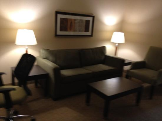 Holiday Inn Express & Suites Ottawa West - Nepean: livingroom