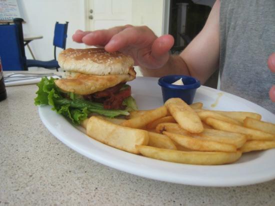 Hideaway Hotel: chicken sandwich