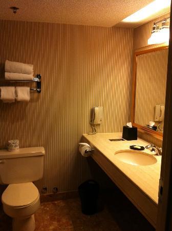 Sheraton Ottawa Hotel: Bathroom