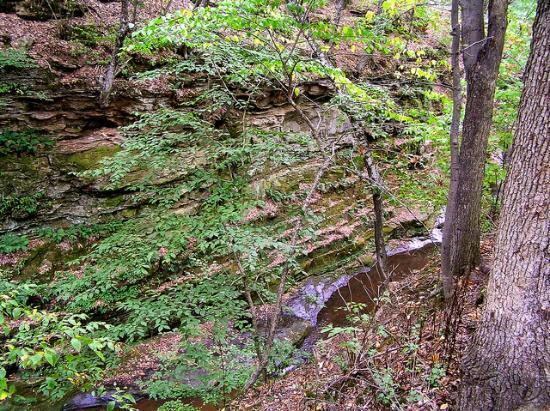 Pewit's Nest Gorge: Pewit's nest