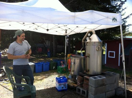Sunshine Herb and Lavender Farm: Vincent explains the distillation process.