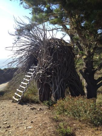 Treebones Resort: human nest
