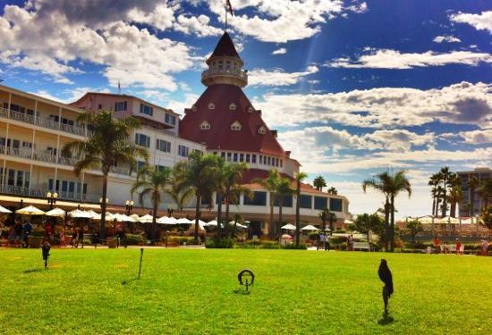 Hotel del Coronado: Falcons are very cool