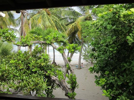 Samara Tree House Inn: view from family room