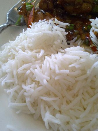 The Uppal Hotel - an Ecotel Hotel: Rice.