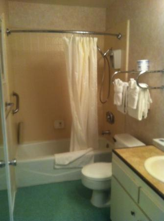 The Inn at Deep Canyon: the bathroom