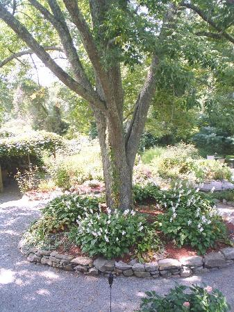 Stonecroft Country Inn: Garden area