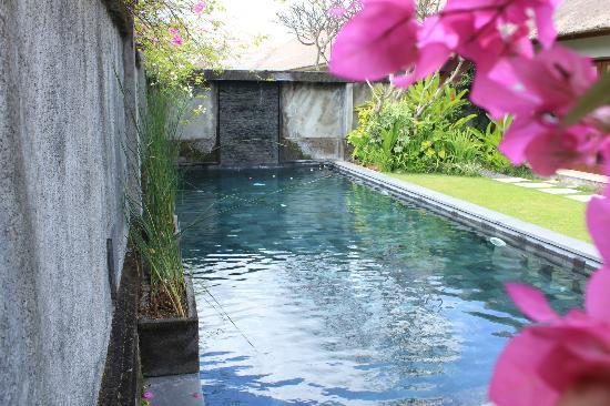Serene Villas: POOL