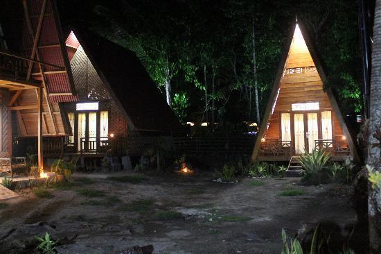 Tanjung Setia, Krui