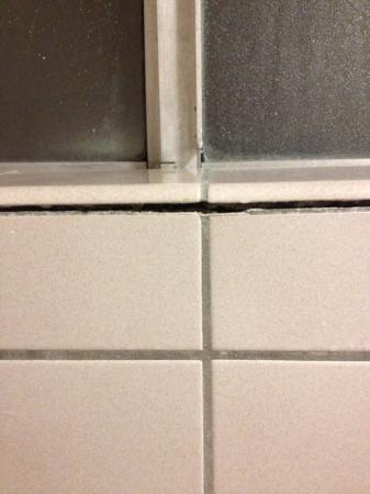 Travelodge San Rafael: tile in shower