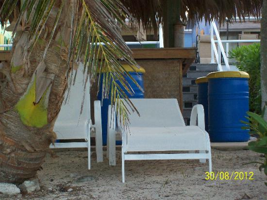 Tail Winds Resort: These beach chairs are perfectly positioned between the beach bar and the sand ...