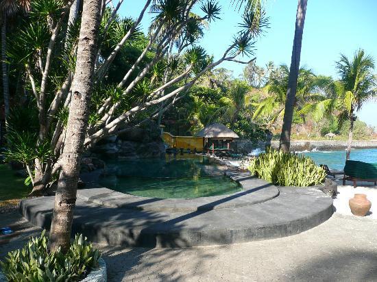 Alang-Alang Boutique Beach Hotel: Garden