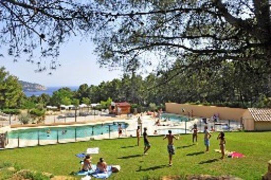 AEC Les Dauphins: la piscine