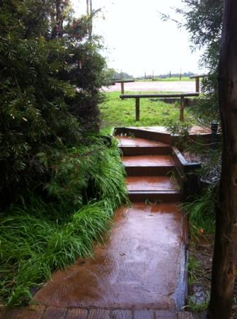 Pump Hill Farm Cottages: stair to our cottage