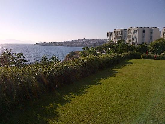 Xanadu Island Hotel: Manicured lawns