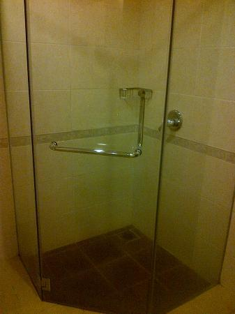Heritage Hotel Cameron Highlands: Shower