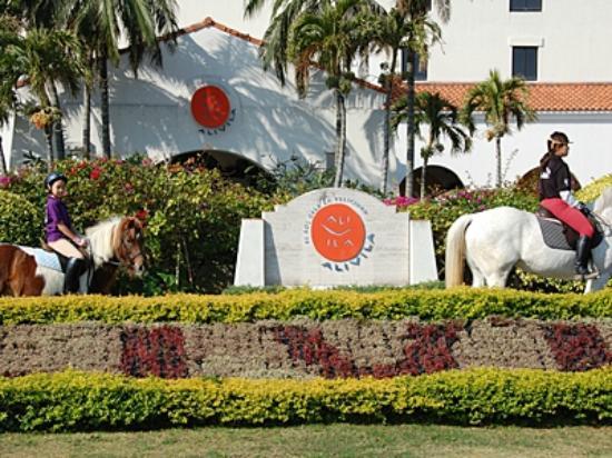 Hotel Nikko Alivila Yomitan Resort Okinawa: 海辺で乗馬体験