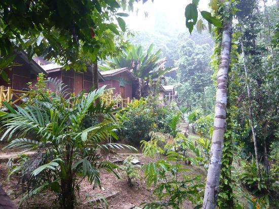 Mat Leon Village: Bungalows