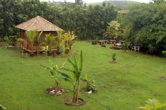 Anahata Sanctuary: bungalow and garden