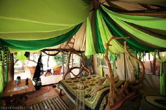 Luxury Bedroom Decor In The Bush Photo By David Bebber Elephant Watch Camp Safaris