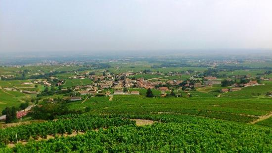 Brasserie Villa Cardinale : View over the beautiful village of Fleurie
