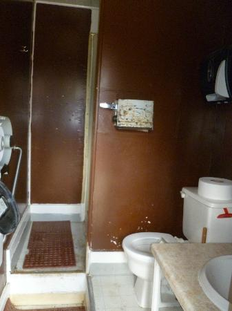 McKinley RV Park and Campground: Lower level bathroom