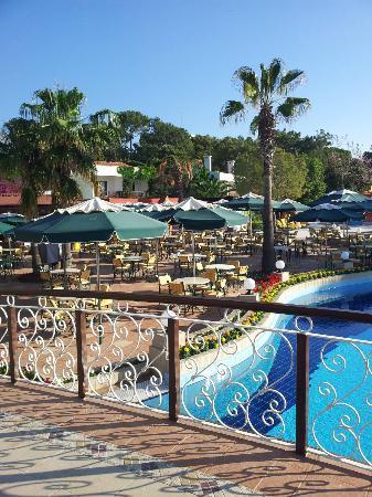 Club Boran Mare Beach: Кафе у бассейна