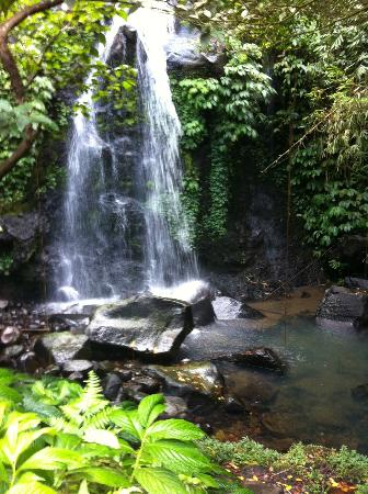 Bali Eco Stay Bungalows: the waterfall