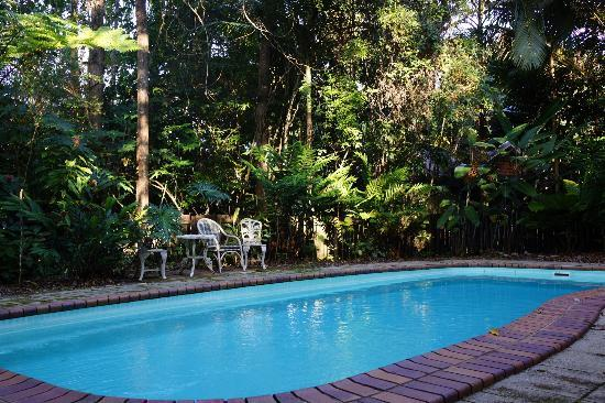 Red Mill House in Daintree: The pool