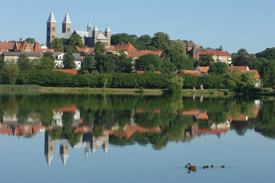 View on Viborg from the lake Søndersø