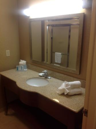 Hampton Inn Petersburg-Southpark Mall: bathroom