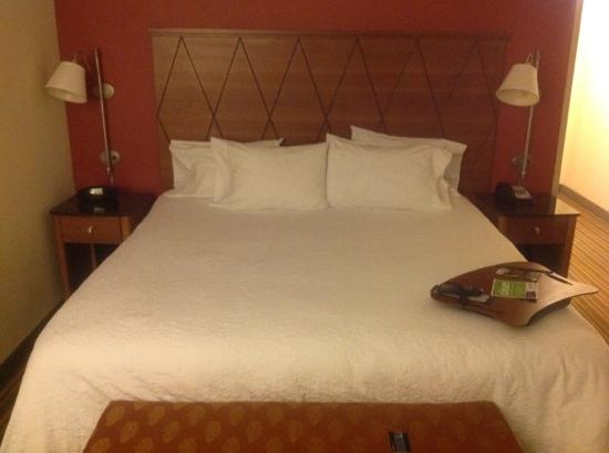 Hampton Inn Petersburg-Southpark Mall: king bed
