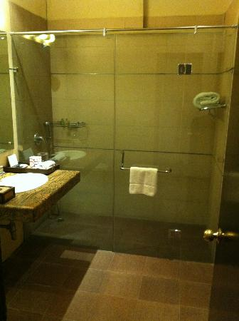 Hotel Clark Greens - Airport Hotel & Spa Resort: Bathroom