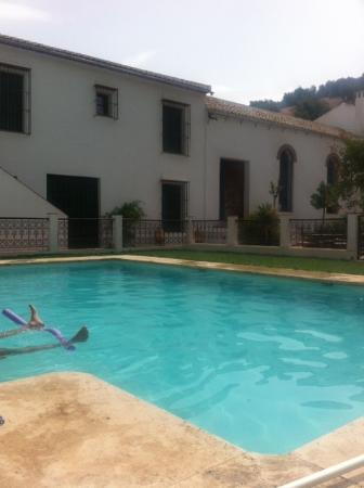 Villa Cortijo Andalus: The pool area