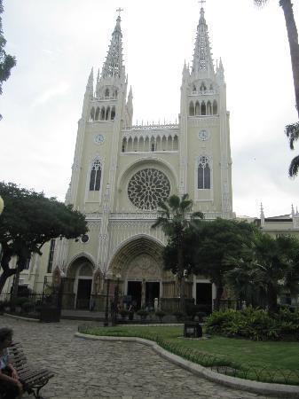 Gray Line Ecuador: Praça das Iguanas