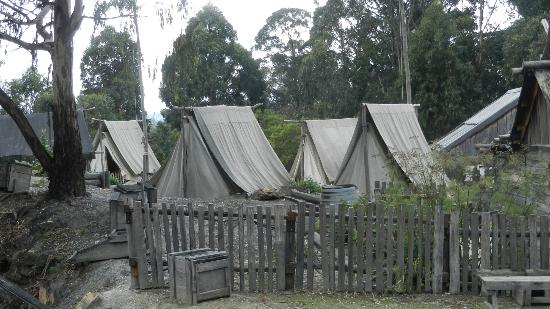 Sovereign Hill Some of the tents you could peer in & Some of the tents you could peer in - Picture of Sovereign Hill ...