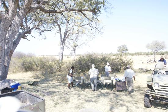 Lagoon Camp - Kwando Safaris: Luch brought to us in the bush