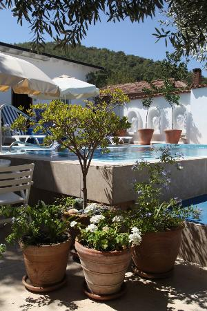 The Muses House Boutique Hotel: The Pool Courtyard