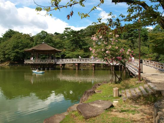 鷺池 - 奈良市奈良公園的圖片 - TripAdvisor