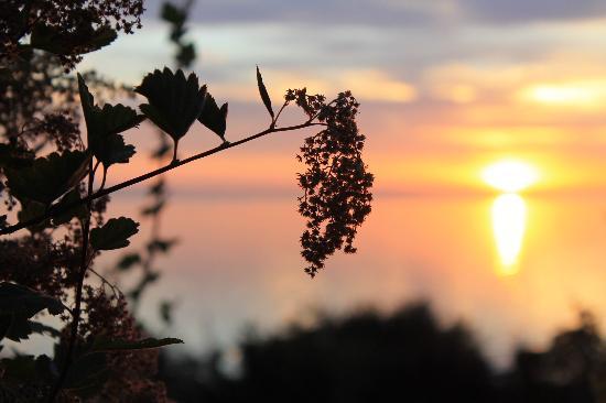 رويال فيكتوريان: Port Angeles Harbor Sunrise